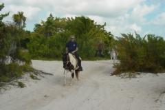 Don on horseback